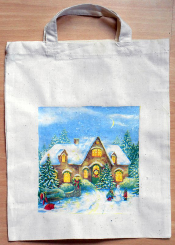 great winter cotton bag snwoy house