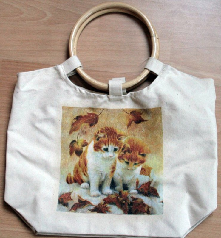 cute shopper autumn cats