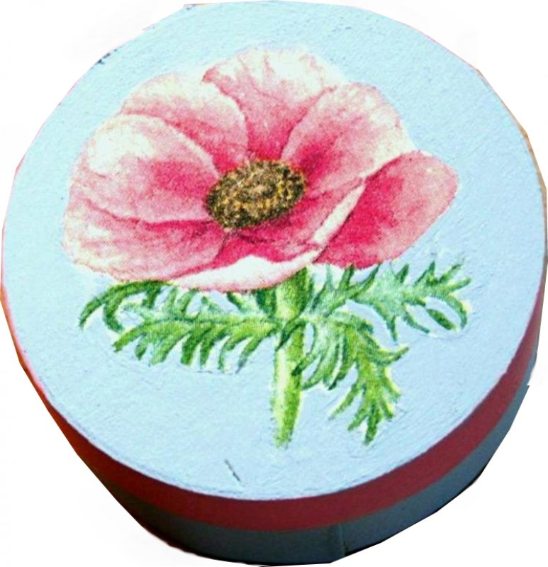 hübsche Geschenkdose / Geschenkverpackung Anemone