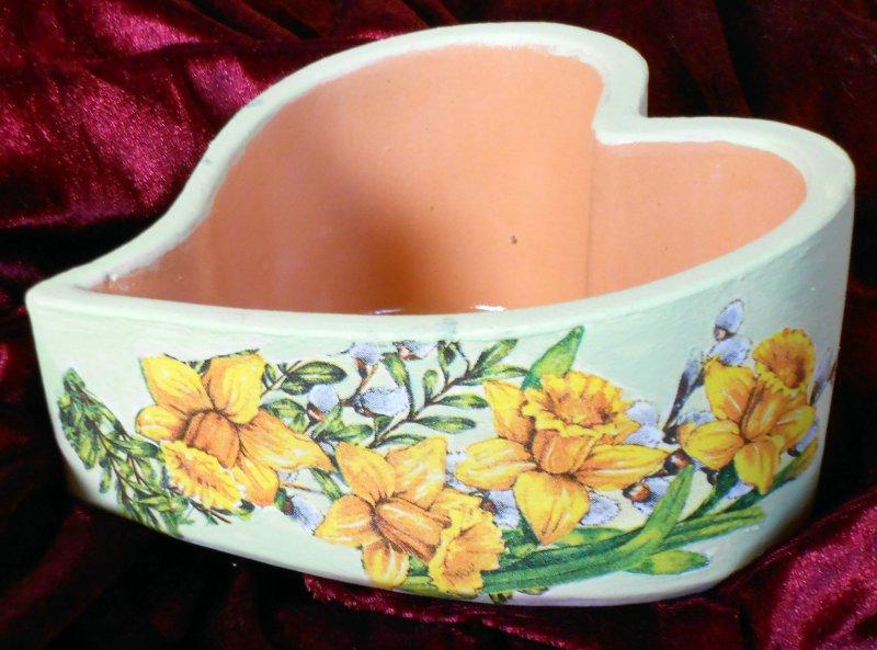 nice bowl daffodils