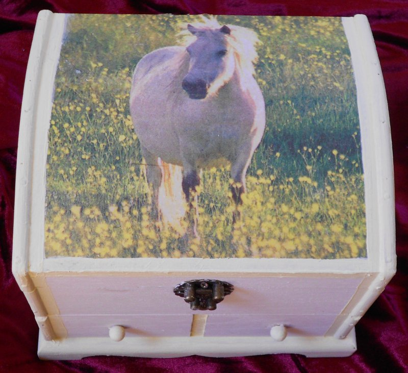 beautiful jewelery case white horse