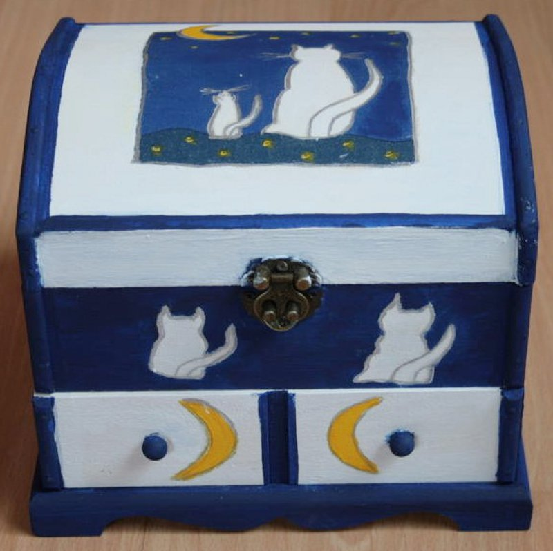 beautiful jewelery case white cats
