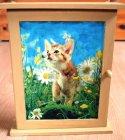 Schlüsselkästchen niedliche Katze in Blumenwiese