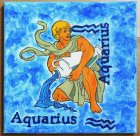 nice wall decoration astrologic design waterman
