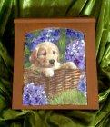 Herziges  Schlüsselkästchen Hundewelpe in Hortensien